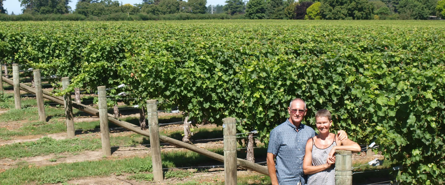 Owners At Vineyard At Vicarage Lane Wines In Blenheim Marlborough NZ